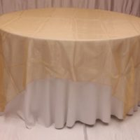 Antique Gold Organza