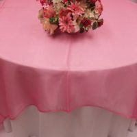 Barbie Pink Organza