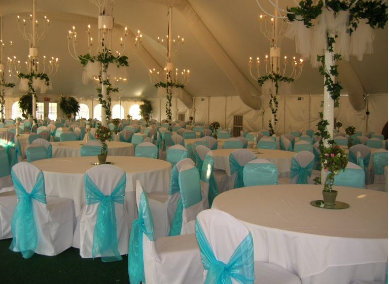 All Seasons Party Linen St Louis Mo 63132