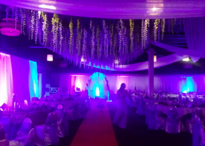 Blue and purple uplighting with romantic wisteria
