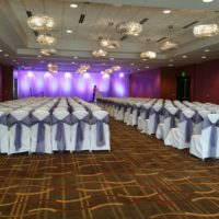 Classic Solid Chair Covers
